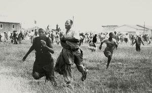 Fleeing the gunfire at Sharpeville